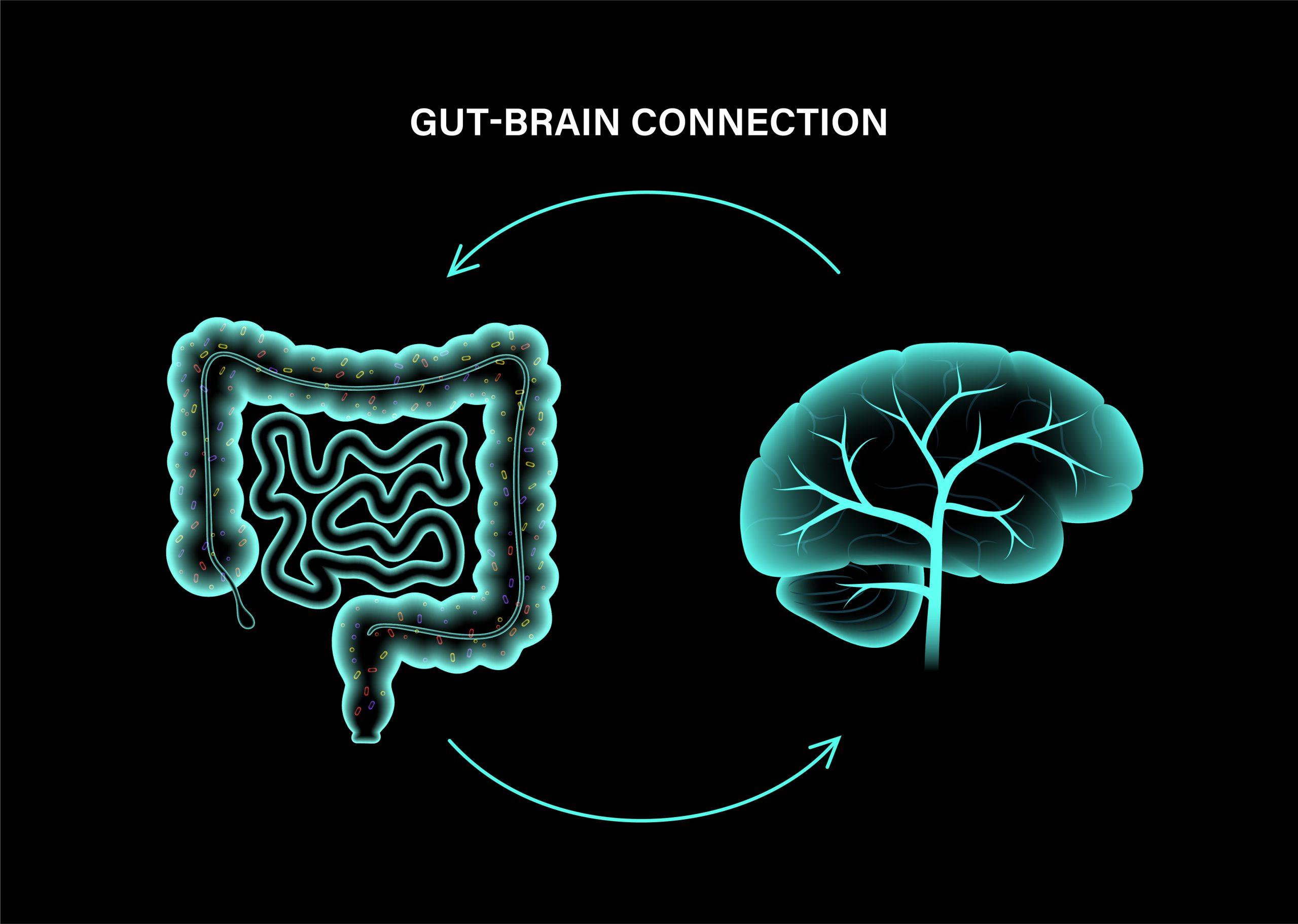 腸は「第二の脳」 腸と全身がコミュニケーション