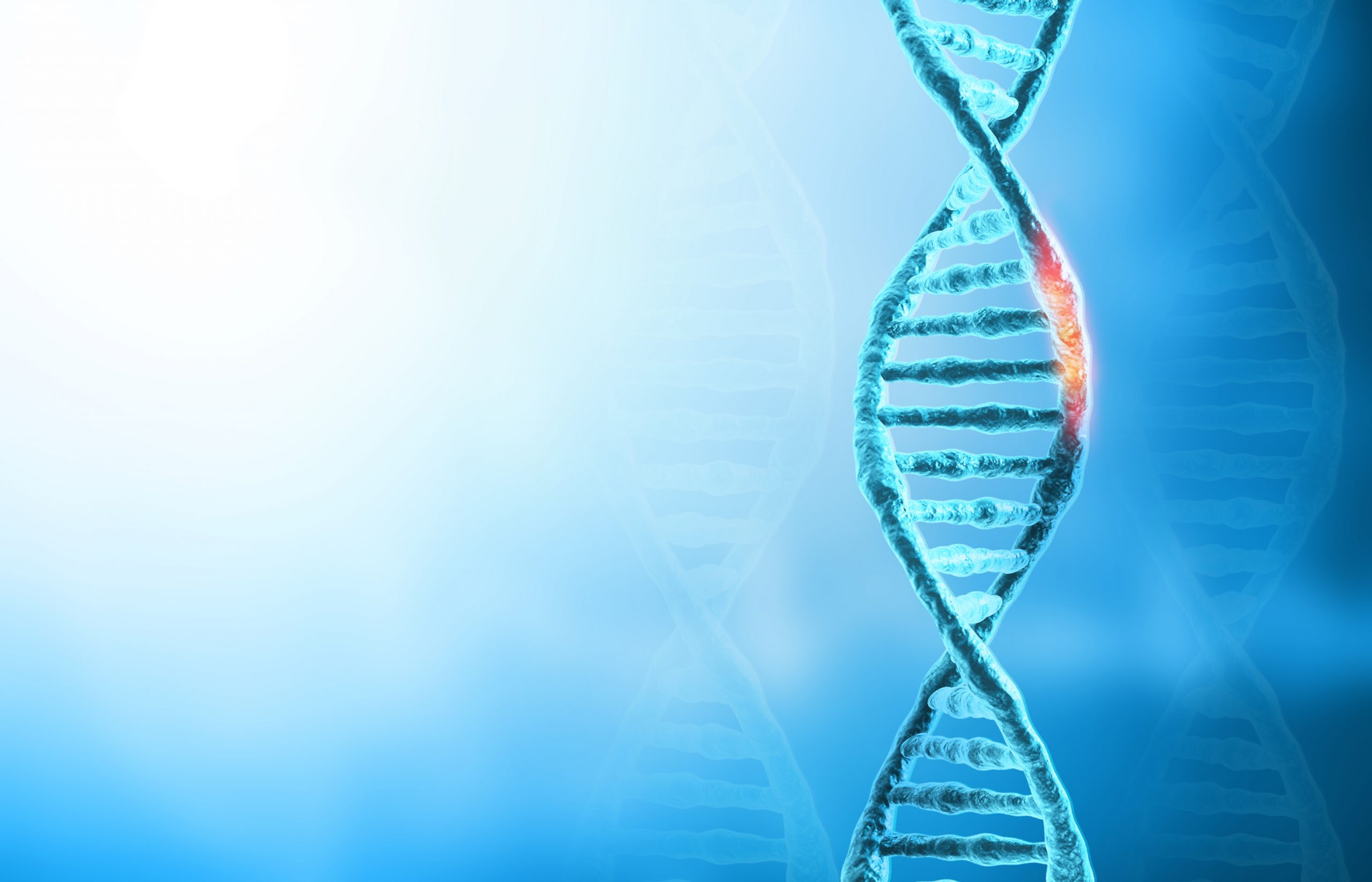 活性酸素の中でもっとも酸化力が強いヒドロキシラジカル
